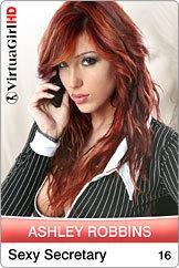Ashley Robbins / Sexy Secretary